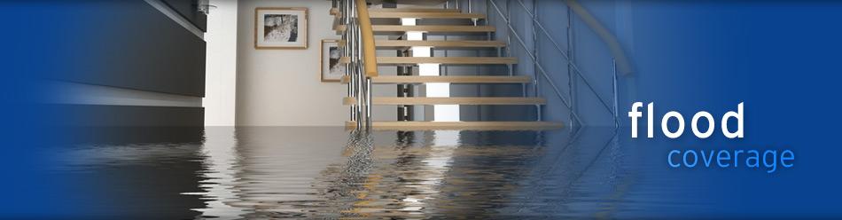 promo_flood